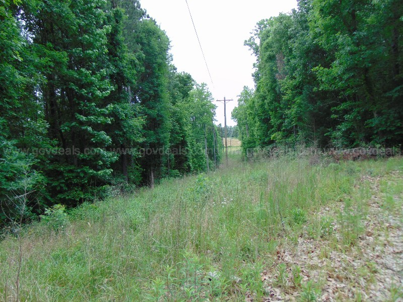 43+ Acre Property with Buildings, Structures, Trails and 2 Creeks